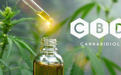 DOT Notice Regarding CBD Products